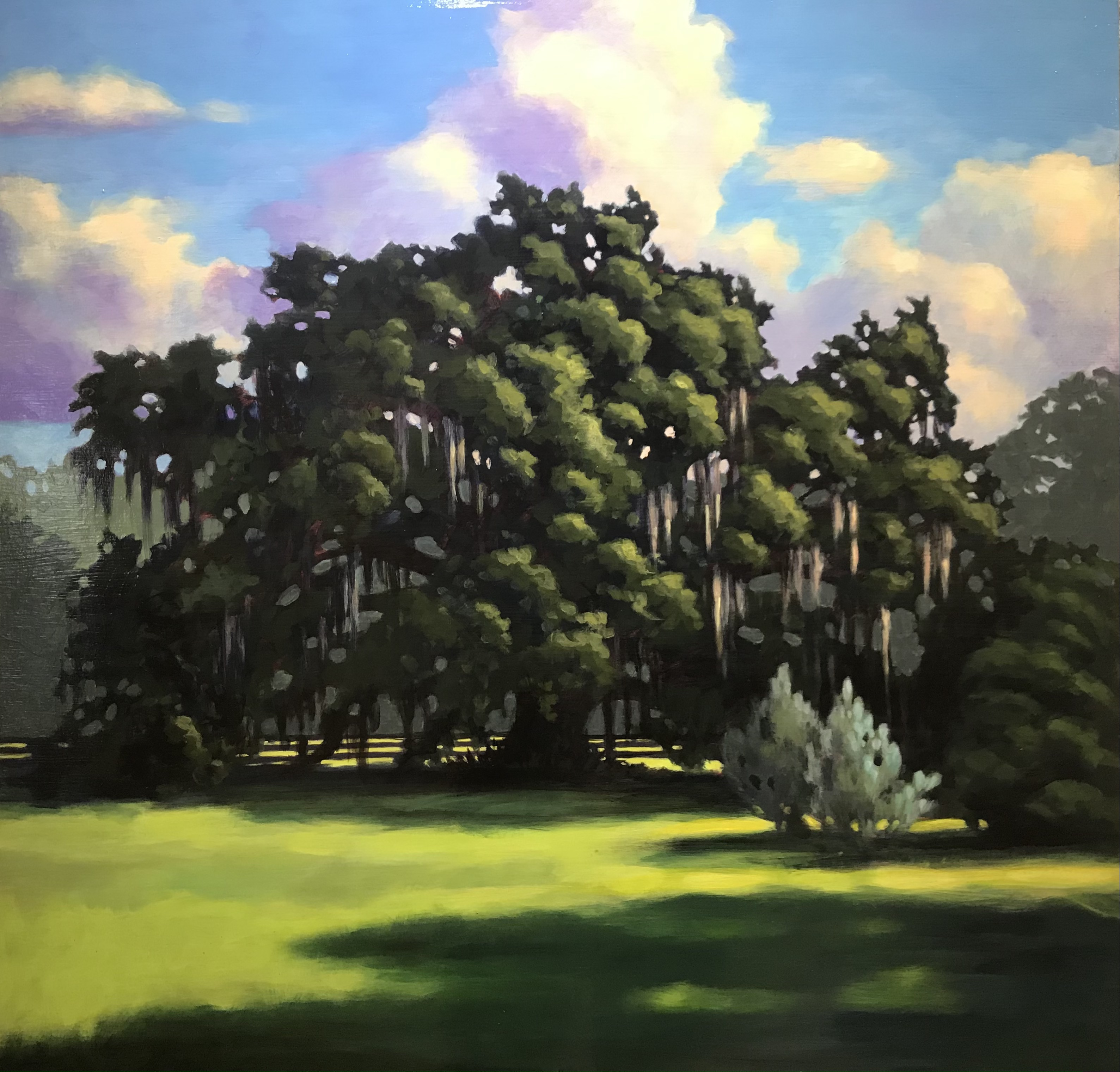 'Cindy's Oak, Sunrise', acrylic on panel by Teri Tompkins ($800) ⎼ 'This is the first in a series that I did of this tree, painted live on my friend's porch in Elkton. (Not to be confused with its sister, that was also entered in a STAAA show.)'